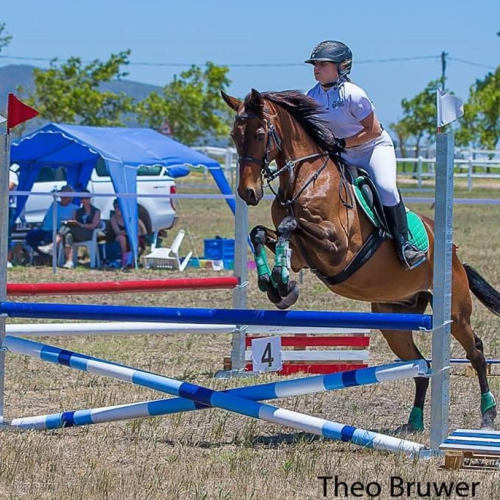 Equine Events Gallery