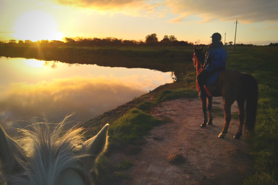 Equine Sunset Outride